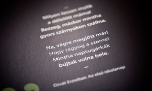 Gemenc_nyomdai_kivitelezes_gemenci_szinek_10_large