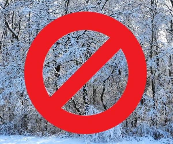 Erdőlátogatási tilalom februárban és márciusban