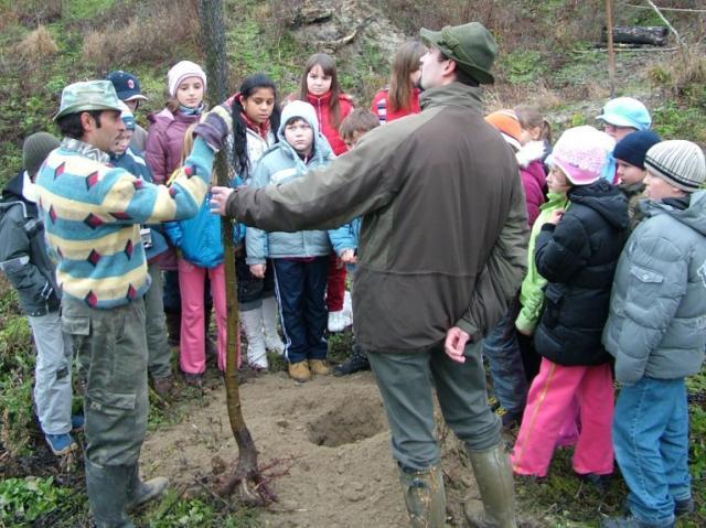 Ma ültették az őshonos, természetközeli erdő facsemetéit, diákok bevonásával, a Gemenc Zrt. erdészei