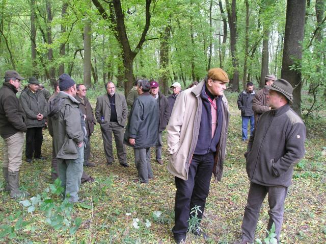 Műszaki fejlesztés, gépesítés múltja és jelene a Gemenc Zrt-nél