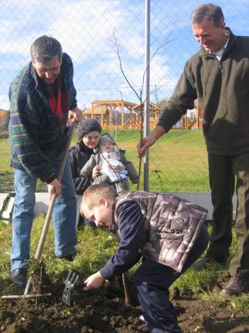 Országos sikerré vált a gyermekekért indított faültetési akció