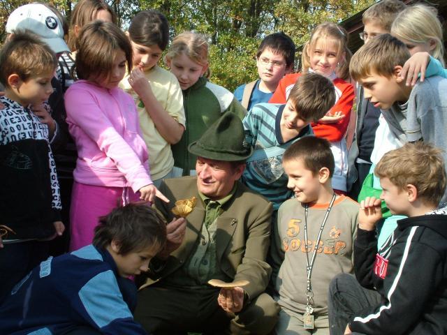 Dél-Dunántúli Régió Erdészeti Erdei Iskoláinak Nyílt Napja