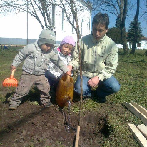 Minden születendő gyermeknek ültessünk egy fát