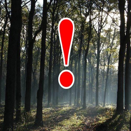 Erdőjárási korlátozások 2019. 11. - 2020. 01.