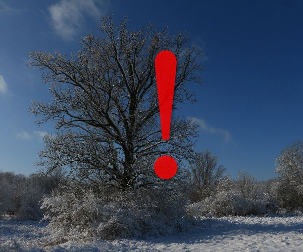 Erdőjárási korlátozások februárban és márciusban
