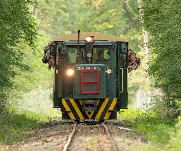 Változás - Az erdei vasút és Keselyűsi Fogadóállomás