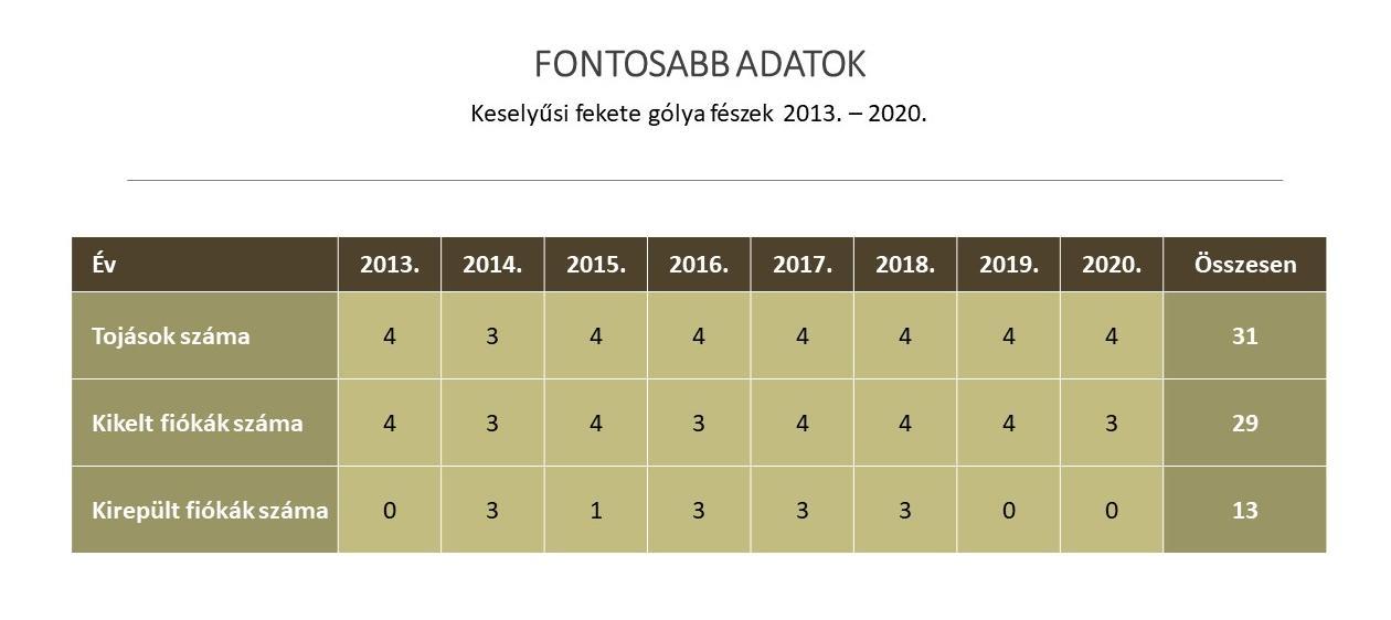 fg_stat_adatok
