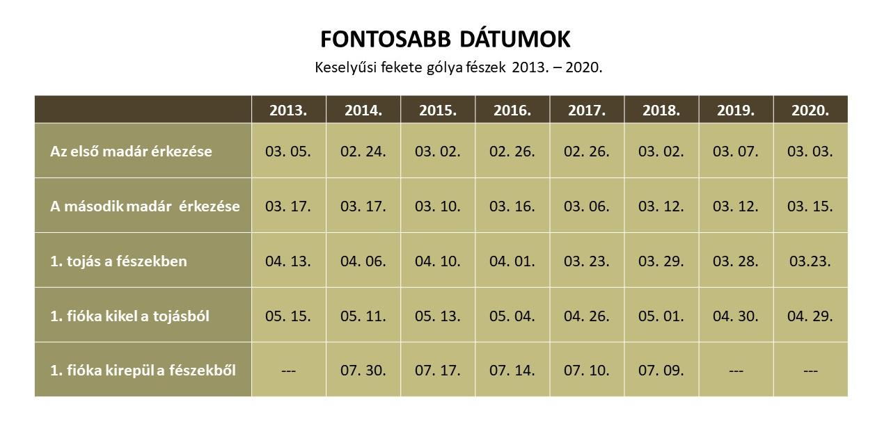 fg_stat_dátumok